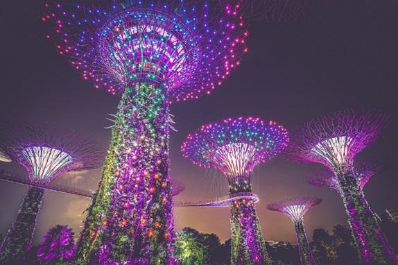 Enjoy in Singapore01010